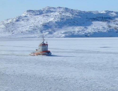 Decision-making tool to help the marine industry in the Arctic region